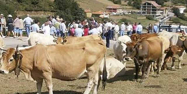 Feria ganadera de San Antón